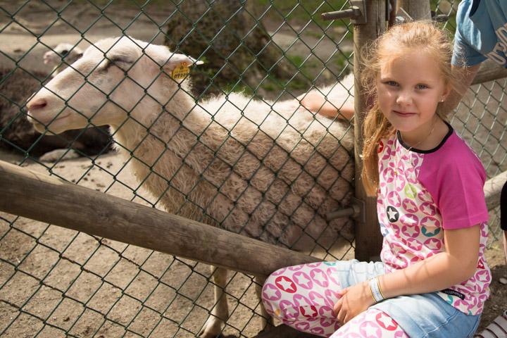 Boras djurpark (12 av 20)