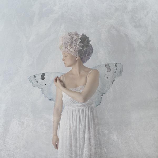 Tiina Petersson – Metamorphosis