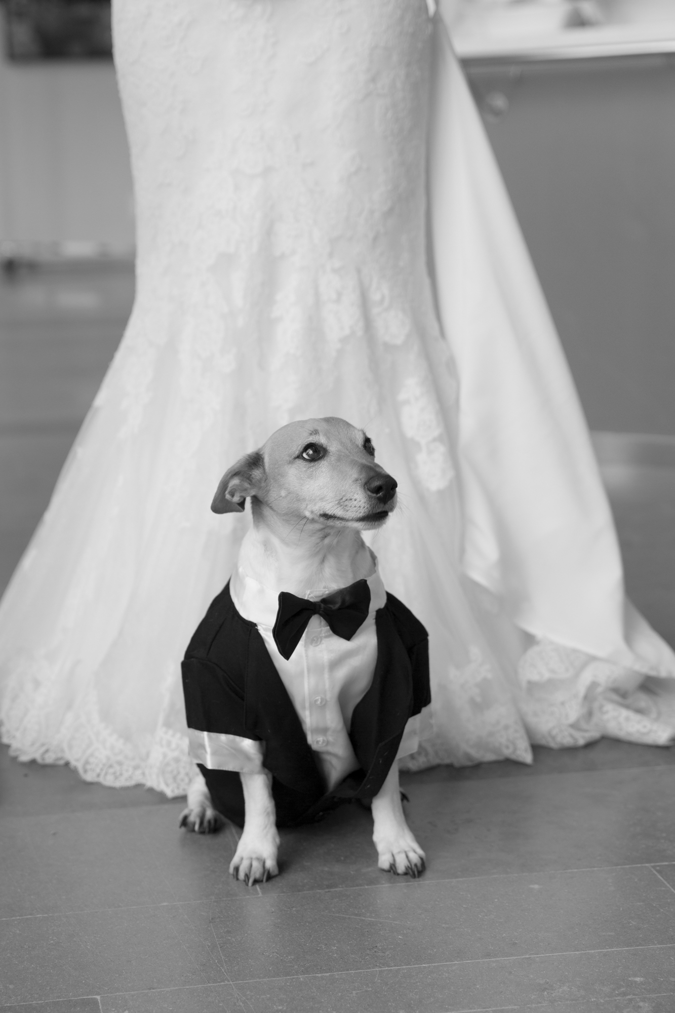 TiinaPetersson Homan och Heidi wedding-13